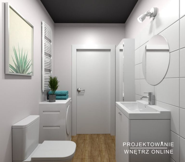 Projekt lazienki - Łazienka pod wynajem2