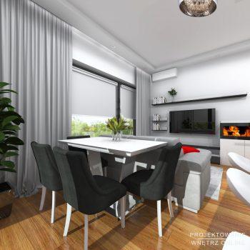 Minimalistyczna-kuchnia-i-salon24