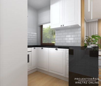 Projekt mieszkania (24)