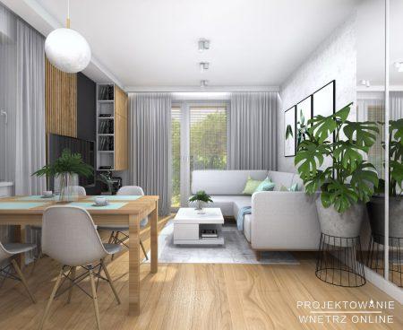 Projekt-salonu-w-domu4
