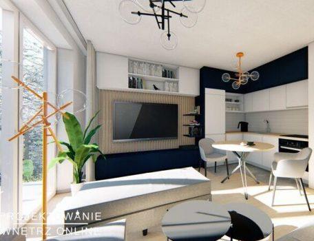 Salon z aneksem kuchennym (4)
