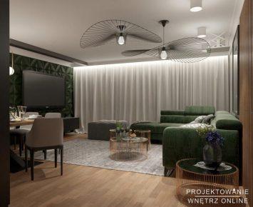 nowoczesny-salon-projekt (0)