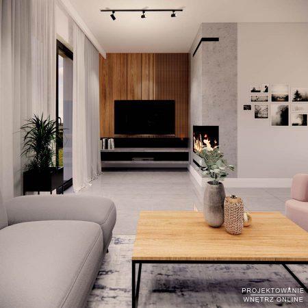 nowoczesny-salon-w-domu (20)