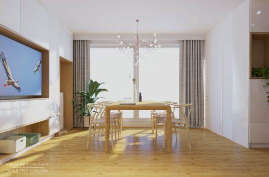 projekt salonu (3)