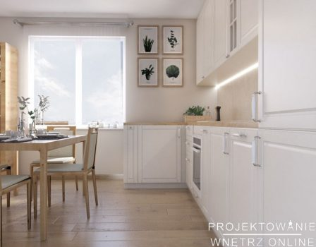 salon z aneksem kuchennym (1)