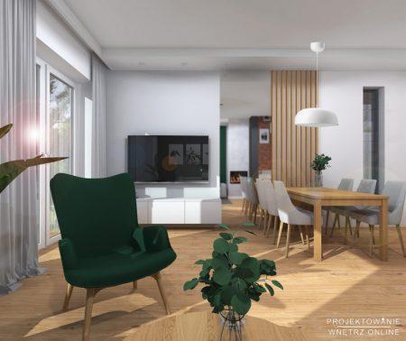 salon-z-aneksem-kuchennym-projekt5